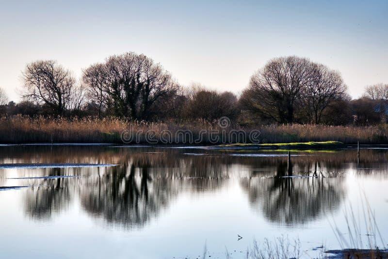 Inverno a Seaton Wetlands in Devon fotografia stock