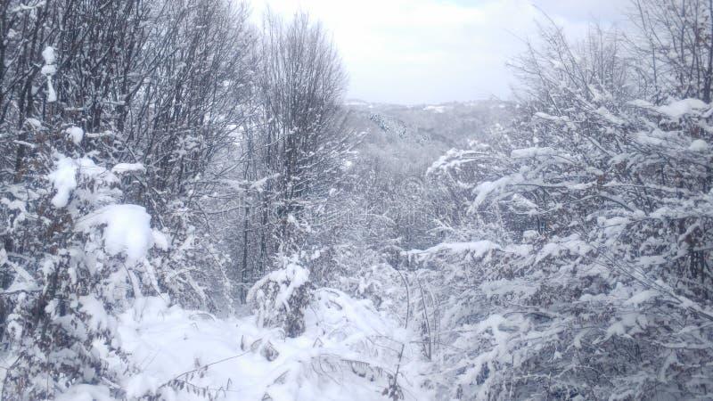 Inverno in Serbia immagini stock libere da diritti