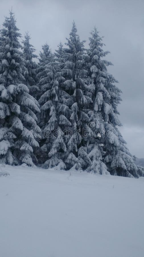 Inverno in Serbia fotografie stock libere da diritti