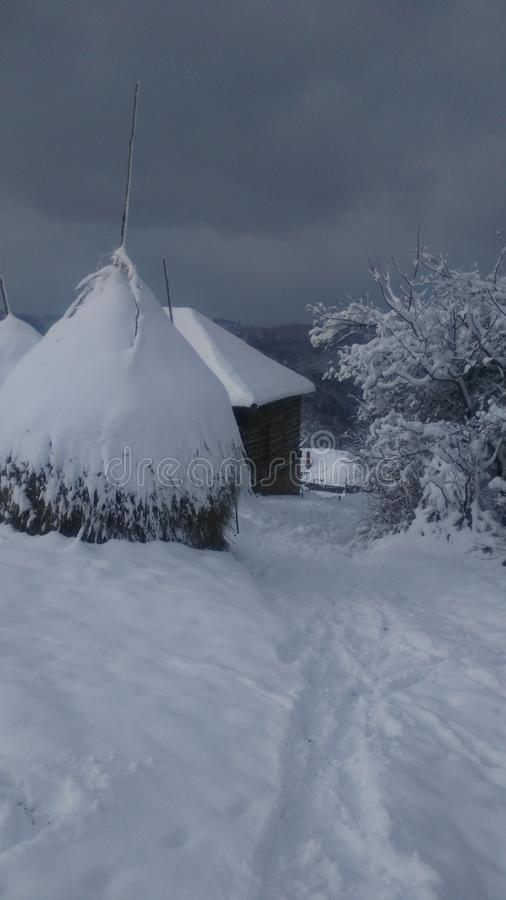 Inverno in Serbia fotografie stock