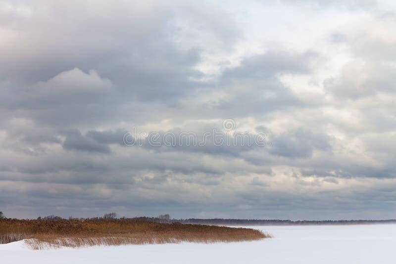 Inverno su una laguna costiera in Dierhagen, Germania fotografie stock libere da diritti