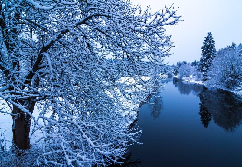 Inverno sul fiume di Sammamish, Washington State immagine stock