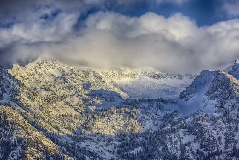 Inverno sul Wasatch fotografia stock