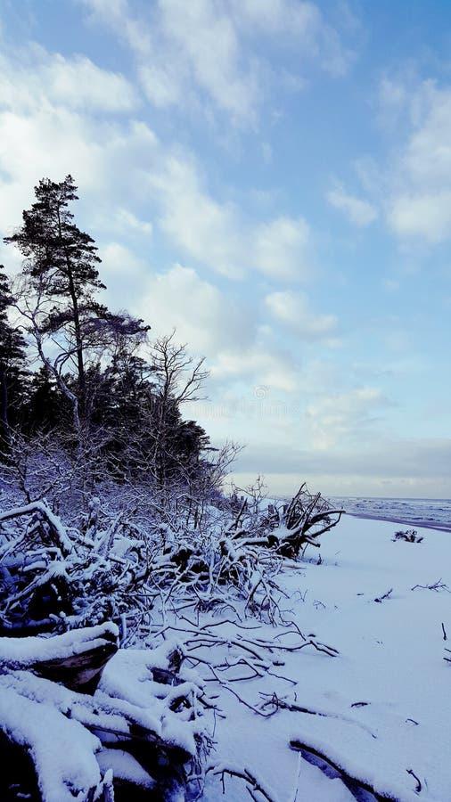 Inverno sulla spiaggia baltica immagini stock libere da diritti