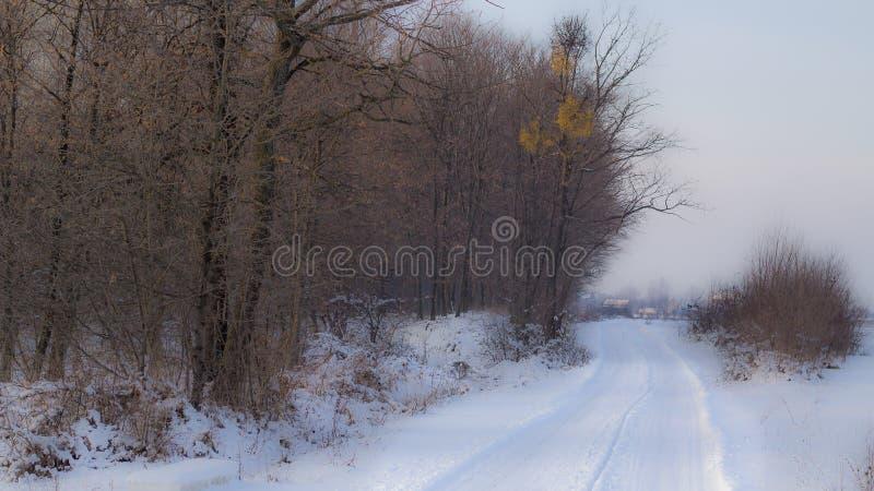 Inverno sulla via fotografia stock libera da diritti