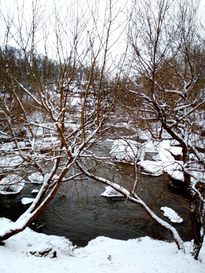 Inverno triste ucrânia imagem de stock royalty free