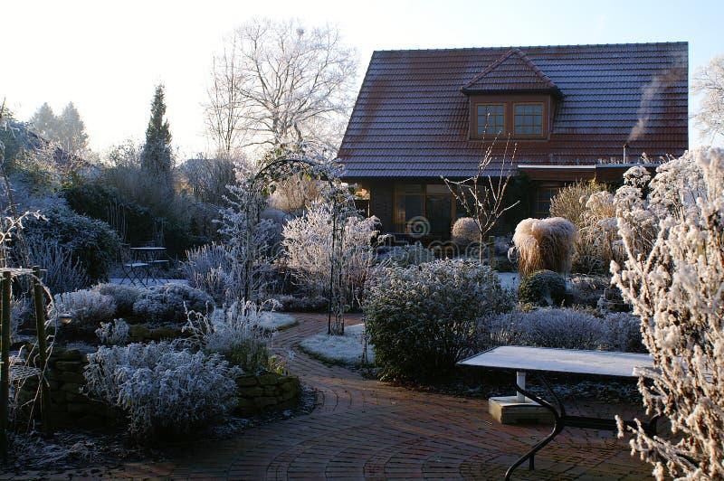 Inverno in un giardino naturale fotografie stock