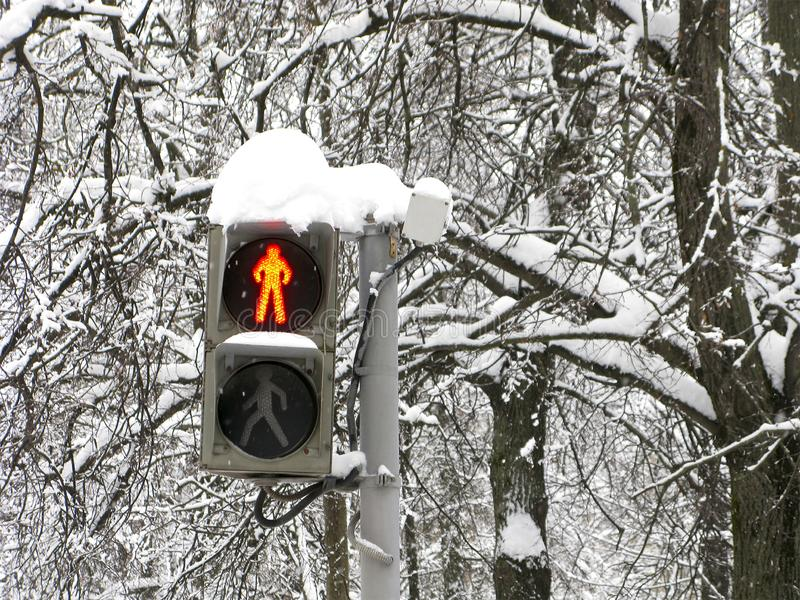 Inverno, via, semaforo per i pedoni, rosso, fermata fotografia stock libera da diritti