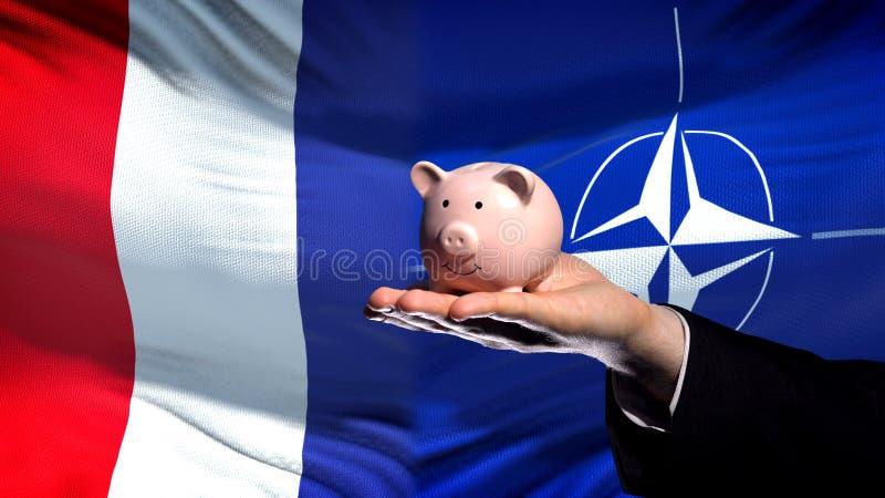 Inversión de Francia en OTAN, mano del hombre de negocios que lleva a cabo el piggybank en fondo de la bandera imagenes de archivo