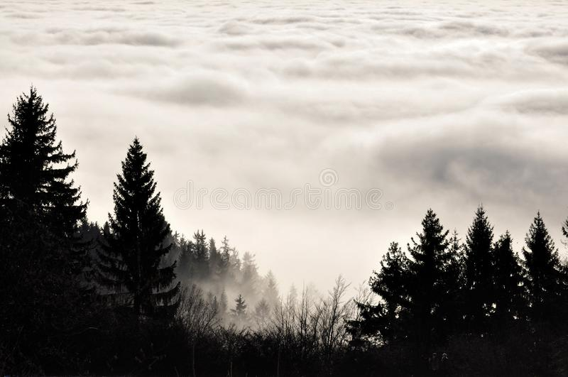 Inversion in autumn. Beautiful autumn inversion in Ore Mountains Krusne Hory in the Czech Republic royalty free stock photography