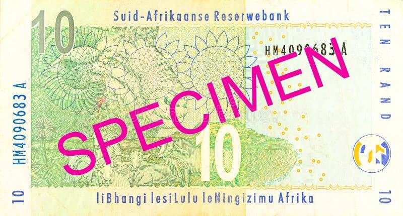 inverso della banconota da 10 Rand sudafricani fotografia stock libera da diritti