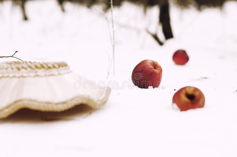 Inverted basket with apples. The story of the Red Riding Hood and the Gray Wolf stock photography