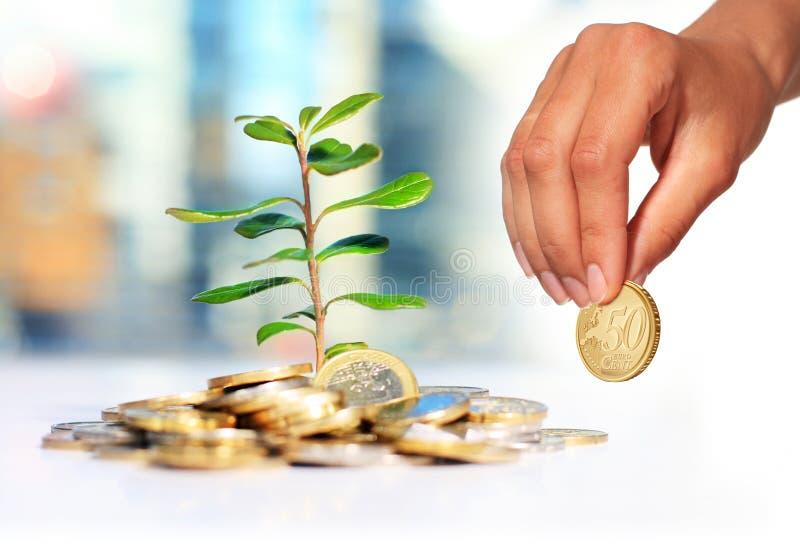 Invest money. Saving money concept stock photo