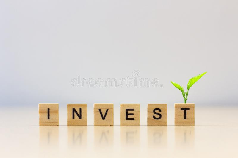 `INVEST` word wooden cube with plant on cube royalty free stock photos