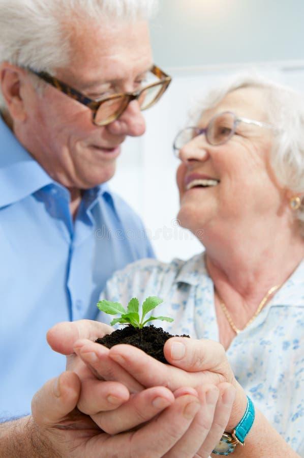 Investering en besparing voor pensionering royalty-vrije stock foto's