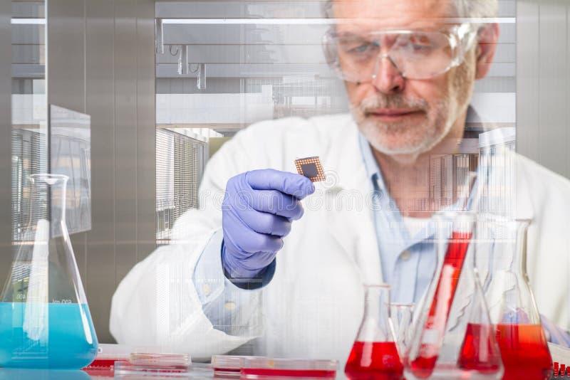 Investigación mayor de las ciencias de la vida que investiga en laboratorio científico moderno imagenes de archivo