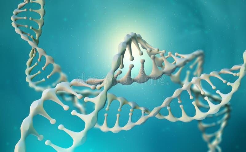 Investigaci?n del genoma de la DNA Estructura de la mol?cula de la DNA stock de ilustración