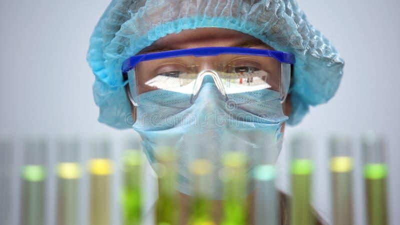 Investigador de sexo femenino en m?scara protectora que analiza la reacci?n de los tubos de ensayo, experimento foto de archivo