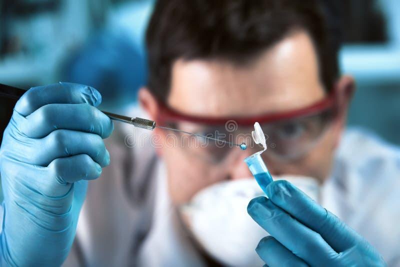 Investigador del técnico que muestrea el tubo de la polimerización en cadena para analítico genético en el laboratorio clínico imagen de archivo