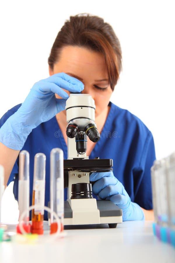 Investigador fêmea que olha em um microscópio foto de stock royalty free