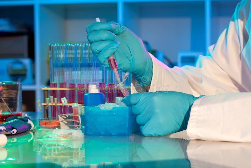 Investigador para a análise do PCR fotografia de stock