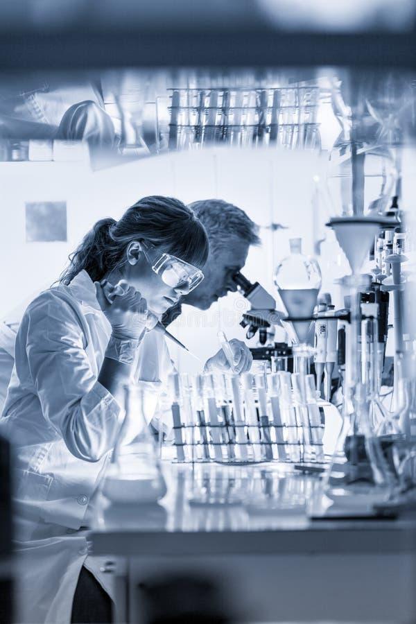 Investigadores de la atención sanitaria que trabajan en laboratorio científico imagen de archivo libre de regalías