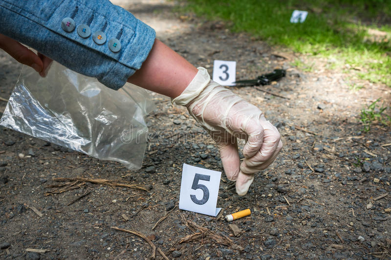 Investigator collects evidence - crime scene investigation. Investigator collects evidence cigarette - crime scene investigation stock photo