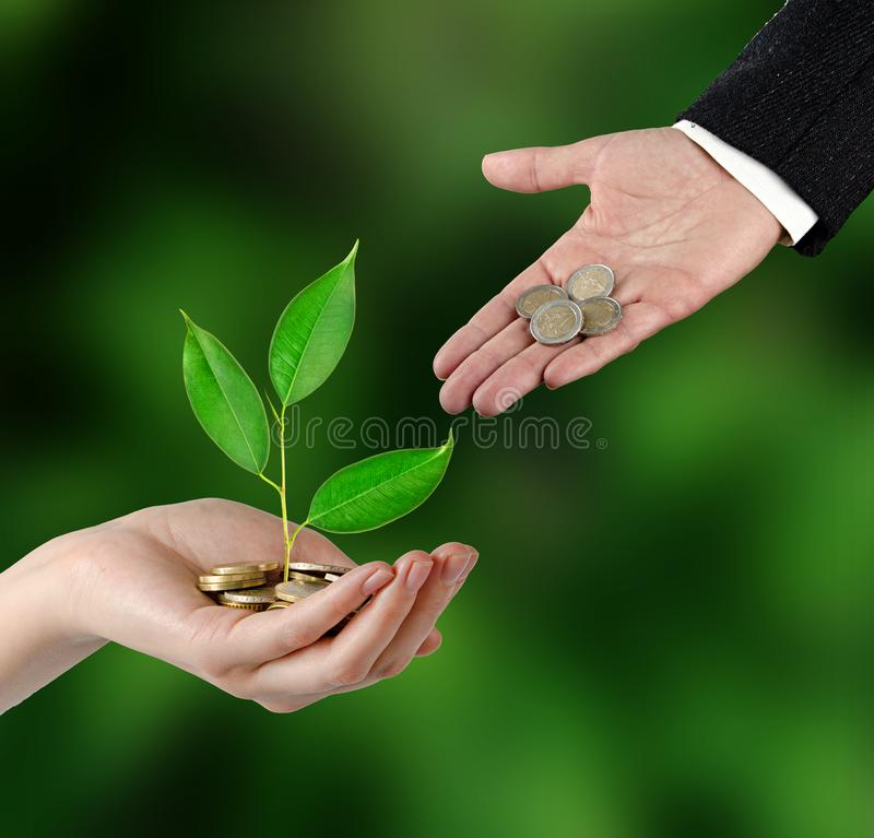 Investing to green business stock photography