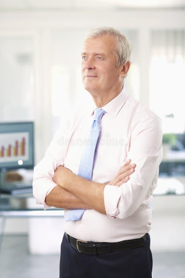 Investment advisor businessman royalty free stock image