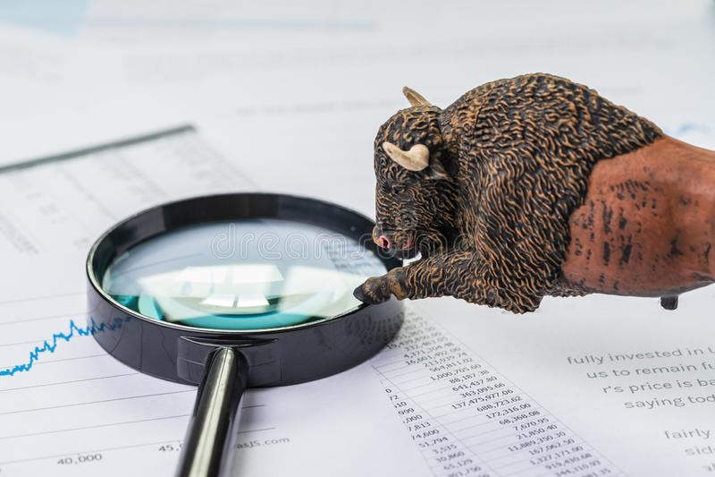 Investment bull stock market concept, bull figure on magnifying glass on chart and graph, price list report paper royalty free stock images