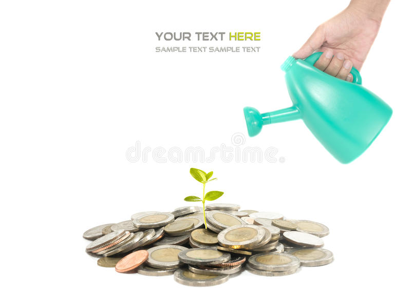 Download Investment concept stock photo. Image of cash, leaf, invest - 39510728