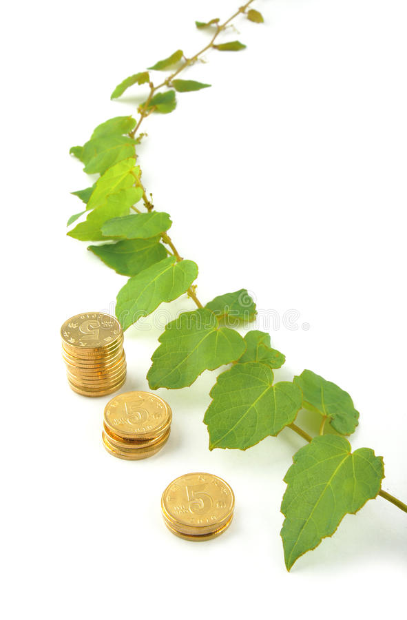 Download Investment grows stock photo. Image of background, green - 18480008