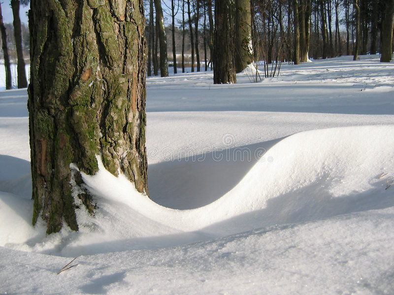 Invierno. fotos de archivo