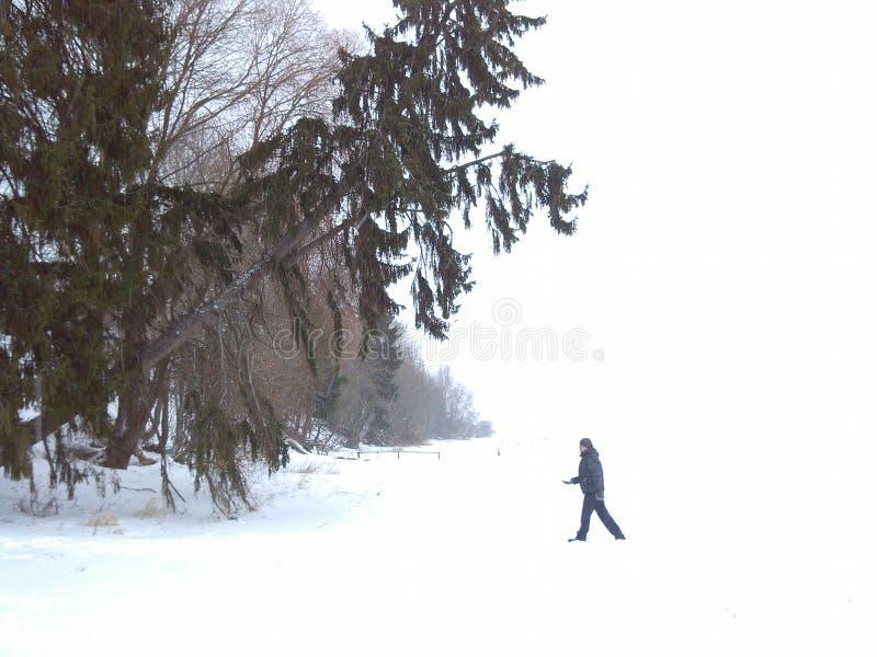 Invierno 1 fotografía de archivo libre de regalías