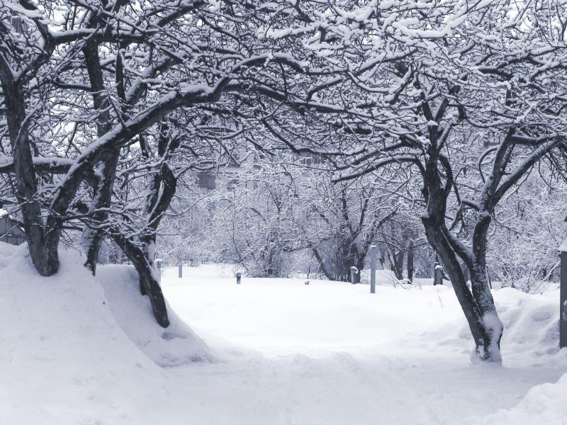 Invierno arcada fotos de archivo