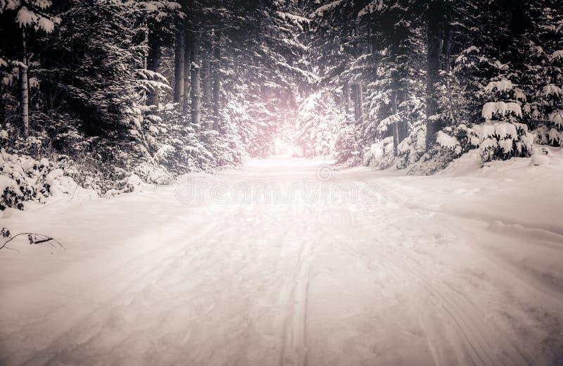 Invierno Backroad imágenes de archivo libres de regalías
