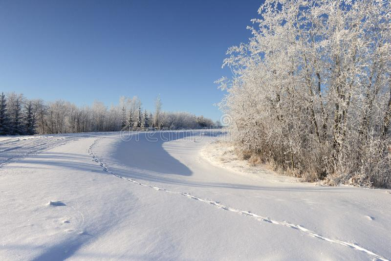 Invierno canadiense fotos de archivo libres de regalías