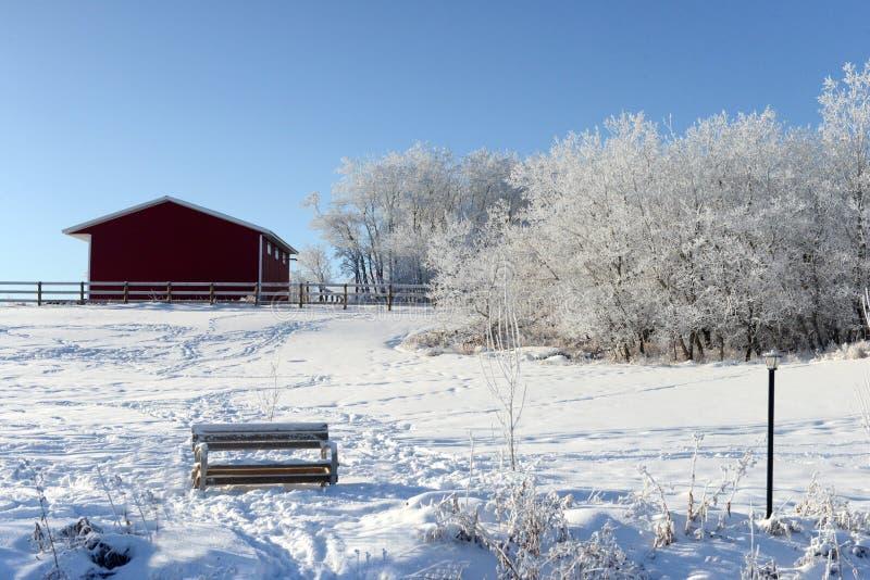 Invierno canadiense fotografía de archivo libre de regalías