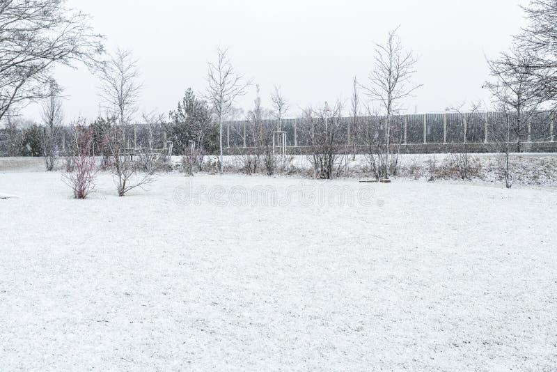 Invierno congelado con nieve imagen de archivo