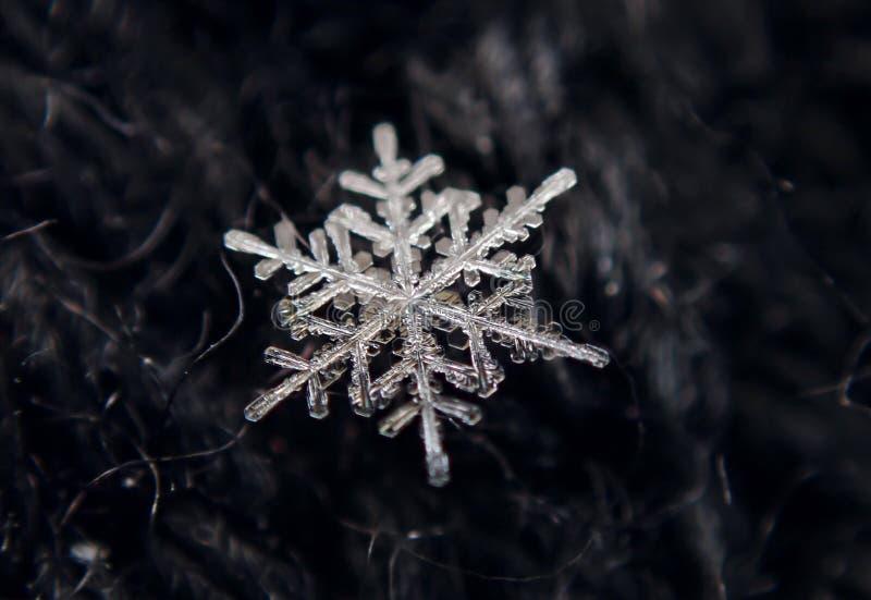 Invierno Copos de nieve - hielo hermoso del cord?n foto de archivo libre de regalías