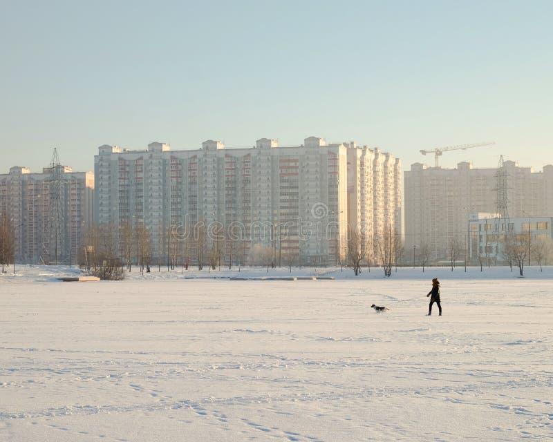 Invierno de Butovo Moscú foto de archivo