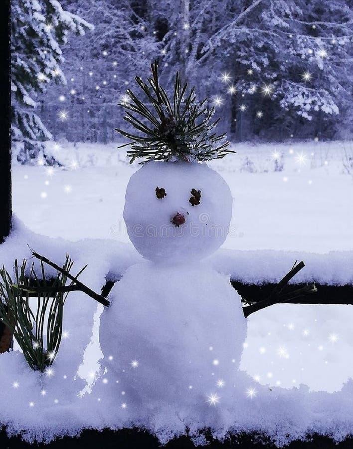 Invierno de escritorio de la helada del muñeco de nieve del fondo fotografía de archivo