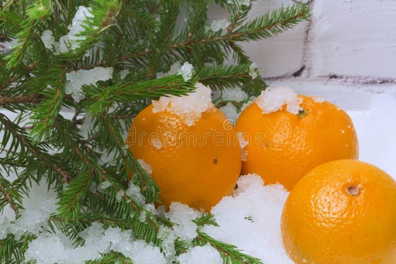 Invierno de la avellana de la nieve de las mandarinas imagenes de archivo