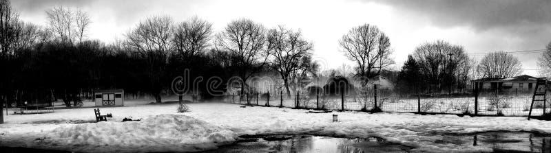 Invierno de niebla (blanco y negro) imagenes de archivo