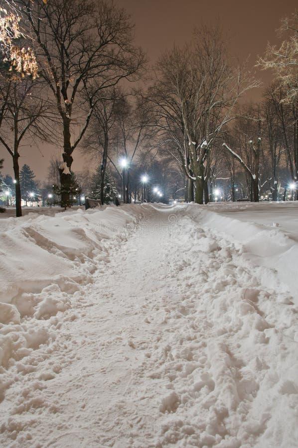 Invierno del parque de Belgrado fotografía de archivo libre de regalías