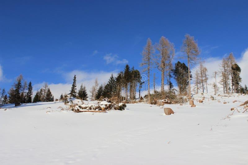 Invierno en Austria fotografía de archivo