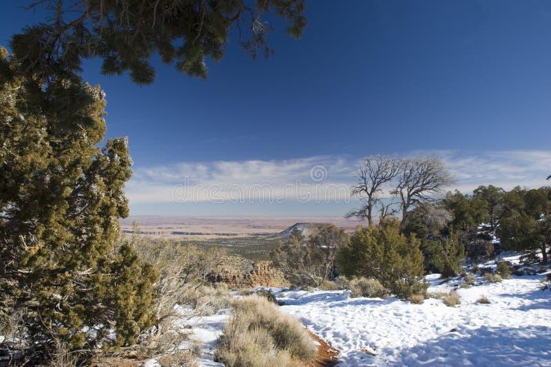 Invierno en barranca magnífica fotos de archivo