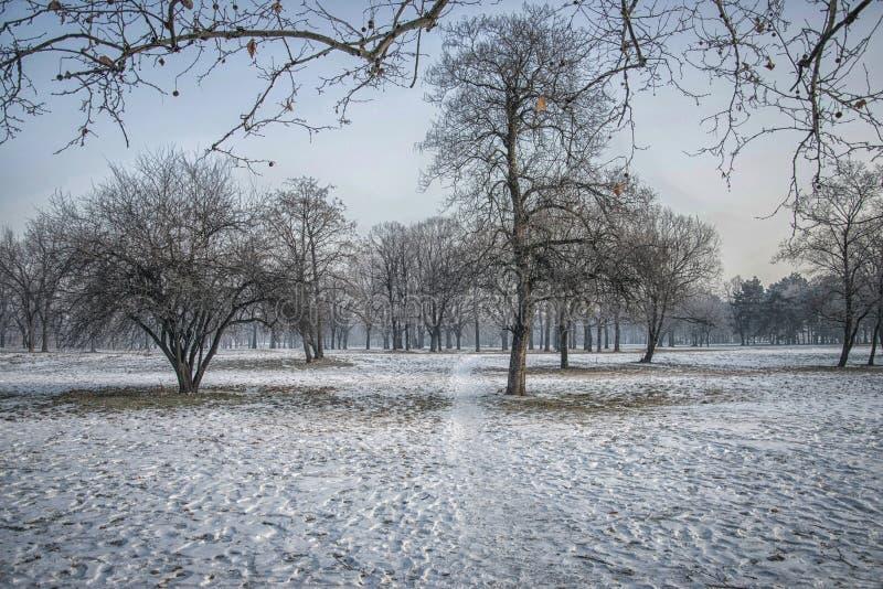 Invierno en Belgrado imagen de archivo