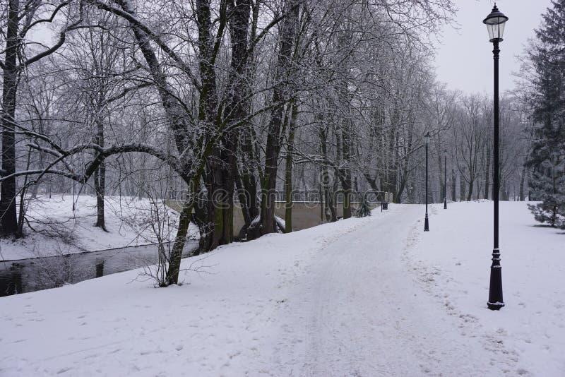 Invierno en el parque 7 foto de archivo