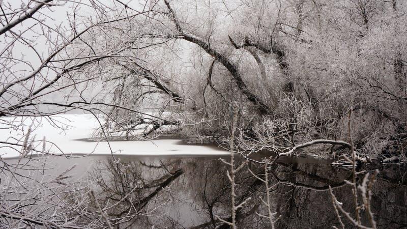 Invierno en el río fotografía de archivo